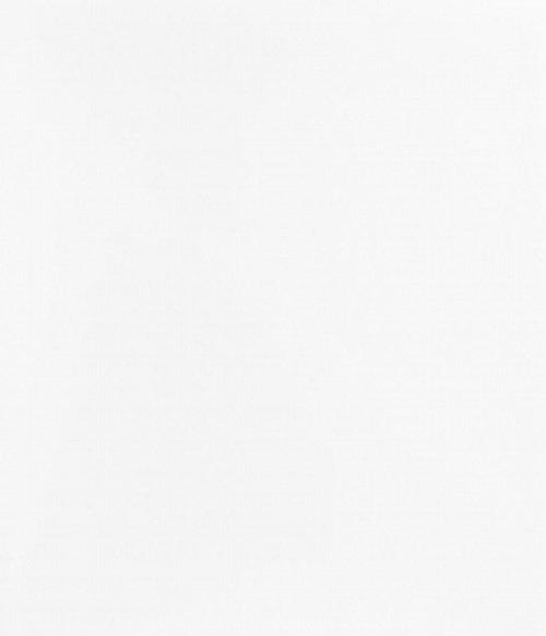 Porcelanato elizabeth 50x100 Imperia bianco esm Comercial